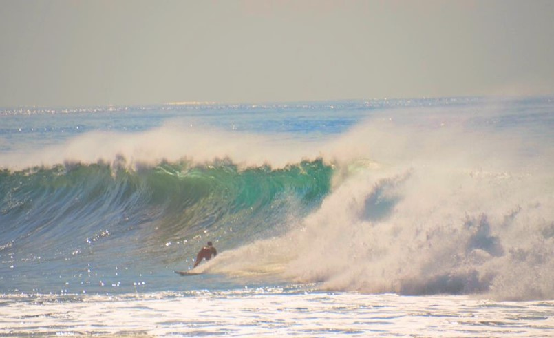 One of many surfers that day catching the waves!