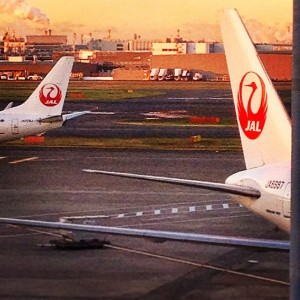 Checking out the tails of JAL from the Diamond Lounge
