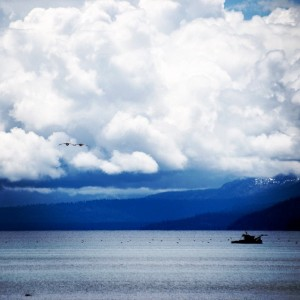 The #magical #views of #Lake #Tahoe! ~ #summer #seagulls #clouds #ohyeah #beautiful #boats #wanderlust #mountains #blue #photooftheday #photo #photoshoot #photogrid