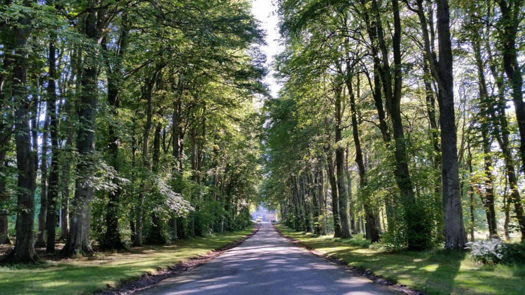 Road to Dunrobin Castle